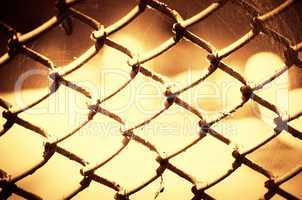 Green metal iron mesh background.