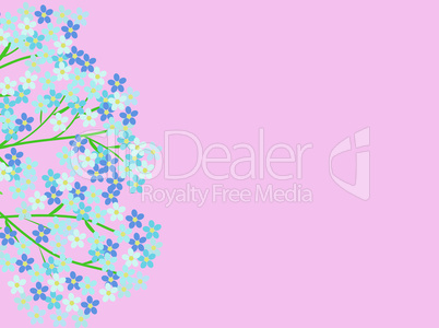 Forget-me-nots blue flowers flowers pink background