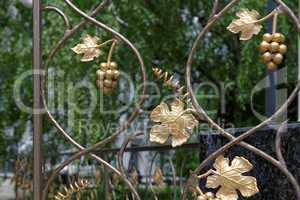 Fragment of decorative lattice in shape of grape vine in Kiev, Ukraine