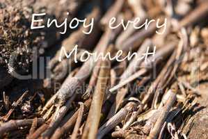 Bamboo Background Enjoy Every Moment