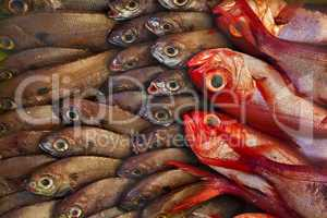 Fischtheke
