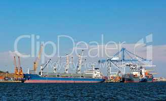 Cargo Sea Port with Cranes