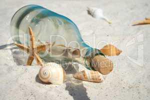 Flaschenpost und Muscheln liegen auf dem Sandstrand