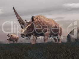 Elasmotherium mammal dinosaurs - 3D render