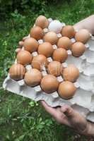 Eggs in paper packaging.