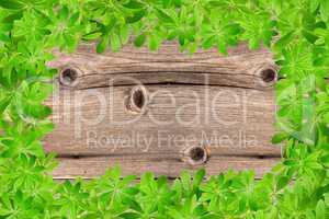 Rustikale Holzwand mit Rahmen aus Waldmeister