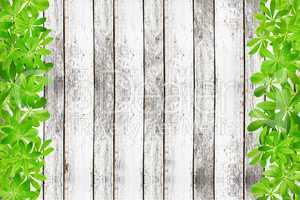 Holzwand mit Rahmen links und rechts aus Waldmeister