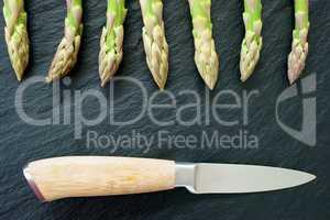Grüner Spargel und Messer auf Schiefer mit Textfreiraum