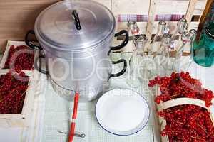 Dampfentsafter und Zutaten für Johannisbeersirup
