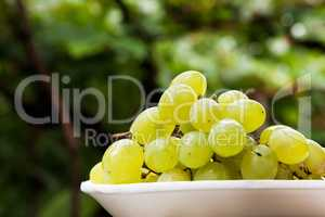 Plate of grape with vine leafs