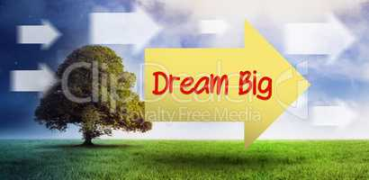 Dream big against field of night and day