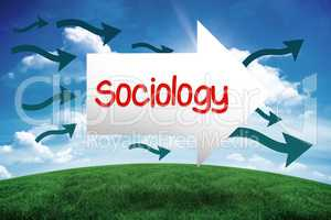 Sociology against green hill under blue sky
