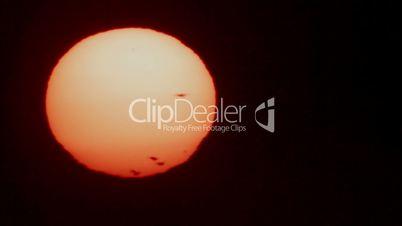 Bird silhouettes on sunset disk