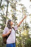 Pretty brunette hiker pointing far away