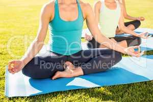 Sporty women meditating on exercise mats