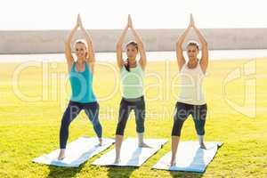 Smiling sporty women doing yoga on exercise mats