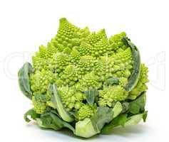 Green Fresh Romanesque Cauliflower