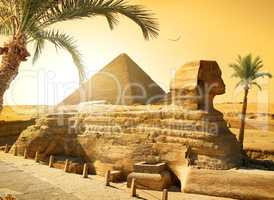Sphinx and palms