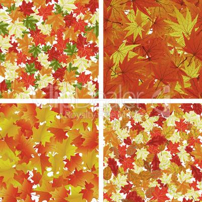 Autumn  Seamless Pattern Set
