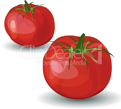Set of Two Glossy Red Tomatoes