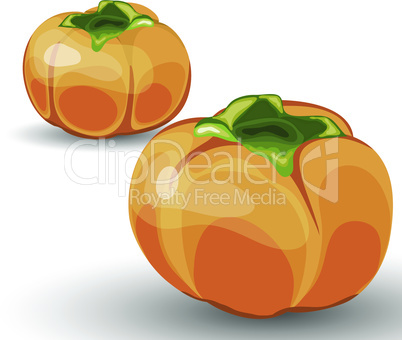 Set of Two Glossy Orange Permisson