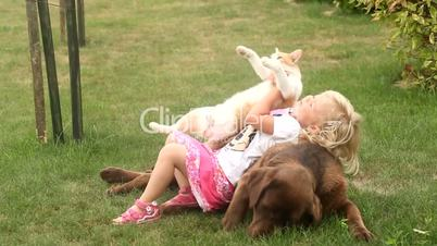 Little girl playing with a Brown Labrador retriever and a yellow cat