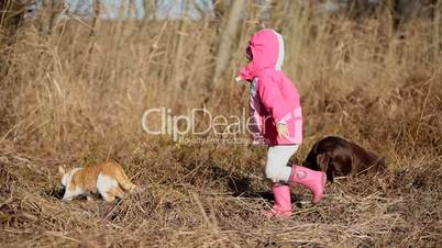 Little girl playing with a Brown Labrador retriever and a yellow cat in winter