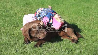 Little girl playing with a Brown Labrador retriever in spring