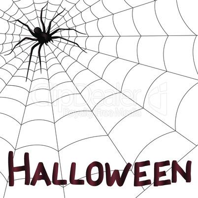 Big horrifying spider on the web