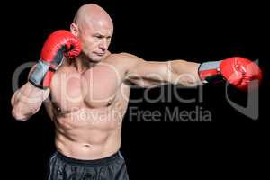 Bald boxer in fighting stance