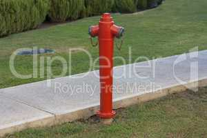 Red fire hydrant against a green lawn photo