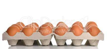 Palette mit rohen Eiern