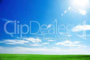 field of fresh green grass and bright blue sky with the sun caus