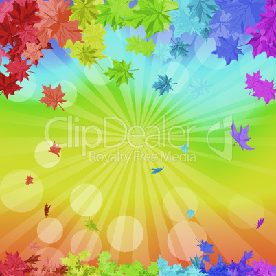 Rainbow Maple Leaves