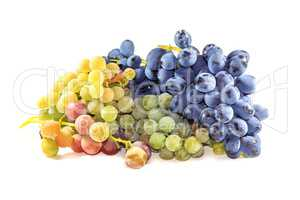 Bunches of ripe grapes