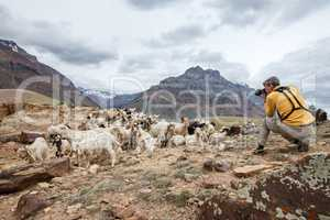 Animal Nature photographer