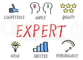 Expert - Competence and Advice