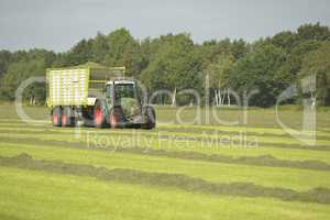 Agriculture, transport of cut grass with green tractor and grass