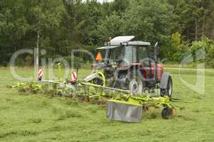 Agriculture, shaking of the mown grass with red tractor with Ted