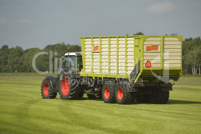 Transport of cut grass with green tractor and grass trailer.