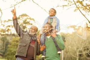 Grandfather pointing something to his son and grandson