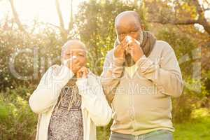 Senior couple blowing their nose