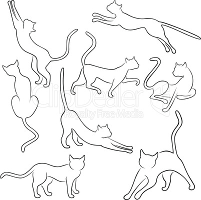 Eight outlines of funny cats