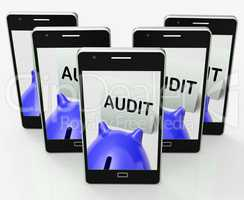 Audit Piggy Bank Shows Inspect Analyze And Verify