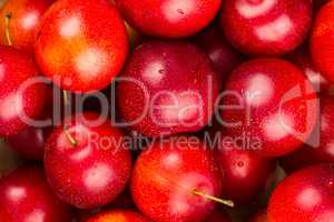 Ripe Plums Background