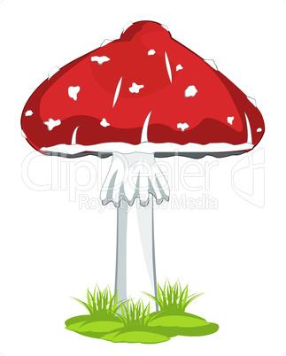 mushroom fly agaric.eps