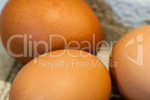 Macro of brown eggs on their sides