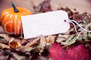 Autumnal leaf pattern on desk with tag