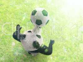 character circus bamboo bear giant panda standing spreading legs to sides chasing ball on his nose. professional football player on background of grass top view with bokeh effect