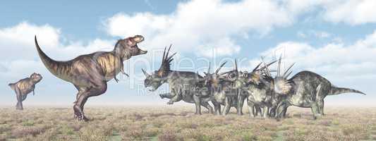Tyrannosaurus Rex attackiert den Styracosaurus
